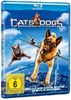 Blu-Ray - Cats & Dogs - Die Rache der Kitty Kahlohr