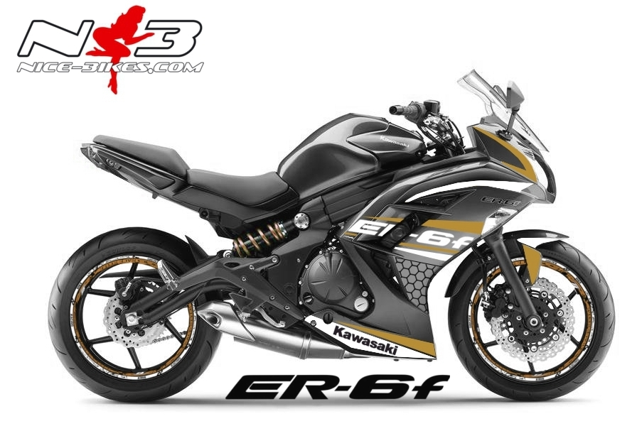 ER6F Race Style gold