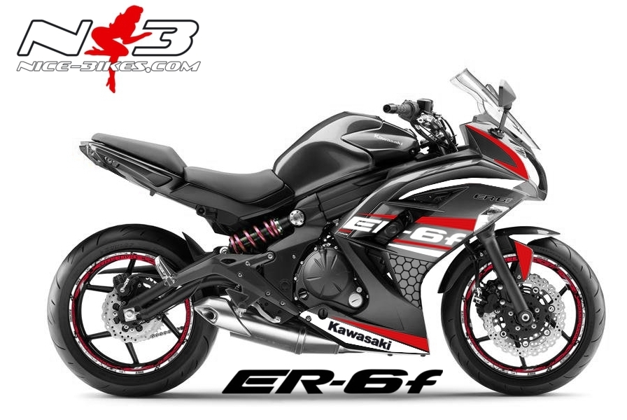 ER6F Race Style rot