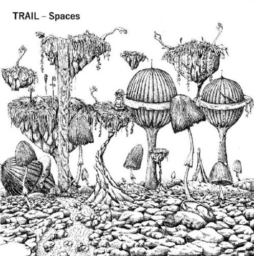 "TRAIL ""Spaces"" LP coloured"