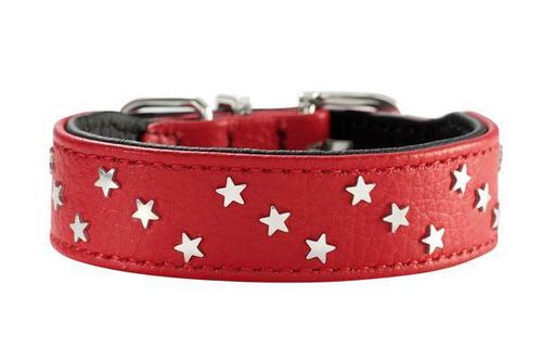 "Hunter-Halsband ""Capri Mini Stars"", 2 Farben"